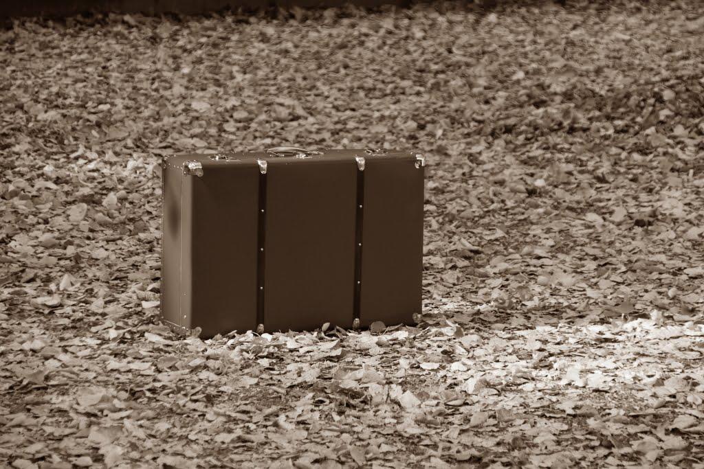 隐形的皮箱 – 谈《皮箱的故事》