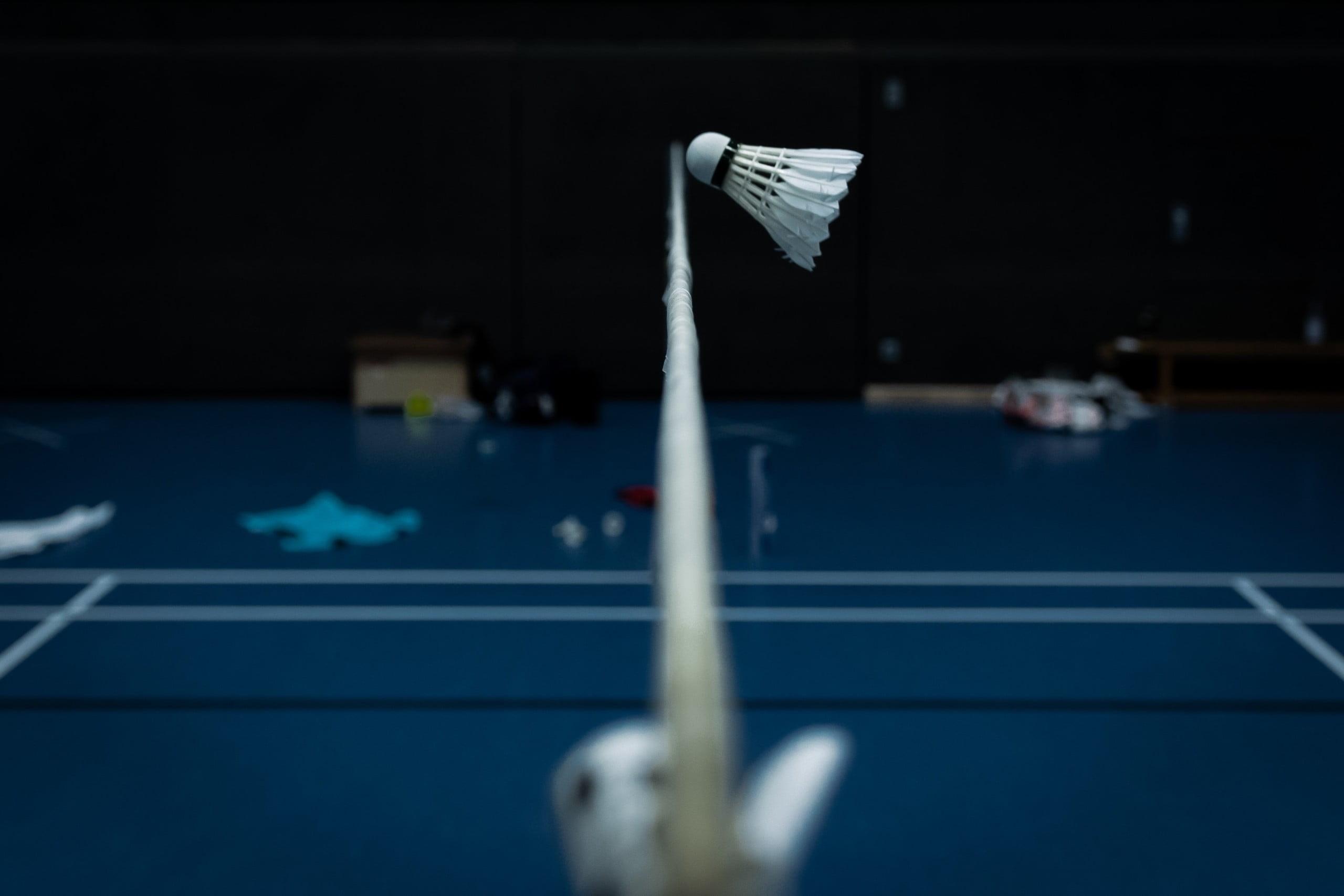 Symbolic Badminton-Picture Nr.1